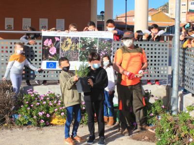 Plantacions a l'escola Sant Josep.