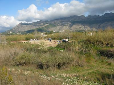 Vista de la zona de plantació.
